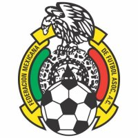 Mexico Football Confederation Light Iron-on Stickers (Heat Transfers)