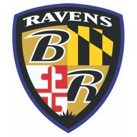 Baltimore Ravens Alternate Logo  Light Iron-on Stickers (Heat Transfers) version 6