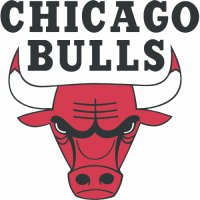 Chicago Bulls Primary Logo  Light Iron-on Stickers (Heat Transfers)
