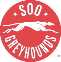 1985 86-1994 95 Sault Ste. Marie Greyhounds Primary Logo Light Iron-on Stickers (Heat Transfers)