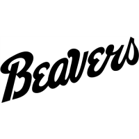 Bemidji State Beavers 2004-Pres Wordmark Logo Light Iron-on Stickers (Heat Transfers)