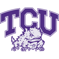 1995-Pres TCU Horned Frogs Alternate Logo Light Iron-on Stickers (Heat Transfers)