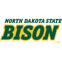 2012-Pres North Dakota State Bison Wordmark Logo Light Iron-on Stickers (Heat Transfers)