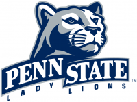 Penn State Nittany Lions 2001-2004 Alternate Logo Light Iron-on Stickers (Heat Transfers) 7