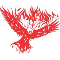 Eagle Flames light-colored apparel iron on stickers version 12