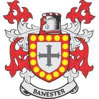 Banester Coat of Arms Light Iron On Stickers (Heat Transfers)