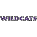Abilene Christian Wildcats 1997-2012 Wordmark Logo1 Light Iron-on Stickers (Heat Transfers)