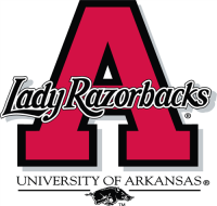 Arkansas Razorbacks 1998-2000 Alternate Logo Light Iron-on Stickers (Heat Transfers)