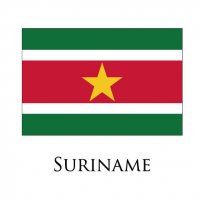 SURINAME Flags light iron ons