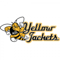 AIC Yellow Jackets 2009-Pres Alternate Logo1 Light Iron-on Stickers (Heat Transfers)