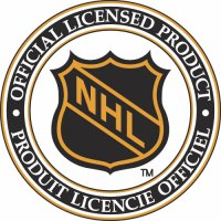 NHL Alternate Logo Light Iron-on Stickers (Heat Transfers) version 3
