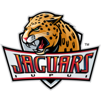 IUPUI Jaguars 2008-Pres Primary Logo Light Iron-on Stickers (Heat Transfers)