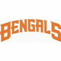 Cincinnati Bengals Script Logo  Light Iron-on Stickers (Heat Transfers)