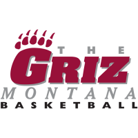0-Pres Montana Grizzlies Wordmark Logo Light Iron-on Stickers (Heat Transfers)