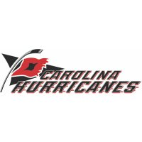 Carolina Hurricanes Script Logo Light Iron-on Stickers (Heat Transfers) version 3