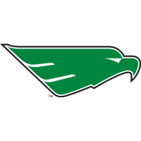 North Texas Mean Green 2005-Pres Secondary Logo1 Light Iron-on Stickers (Heat Transfers)