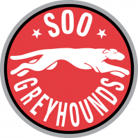 1999 00-2008 09 Sault Ste. Marie Greyhounds Primary Logo Light Iron-on Stickers (Heat Transfers)