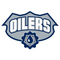 Edmonton Oilers Alternate Logo  Light Iron-on Stickers (Heat Transfers) version 2