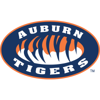Auburn Tigers 1998-Pres Alternate Logo Light Iron-on Stickers (Heat Transfers)