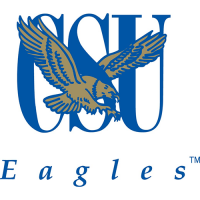 Coppin State Eagles 2004-Pres Alternate Logo Light Iron-on Stickers (Heat Transfers)