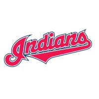 Cleveland Indians Script Logo  Light Iron-on Stickers (Heat Transfers) version 1