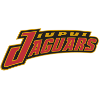 IUPUI Jaguars 2002-Pres Wordmark Logo Light Iron-on Stickers (Heat Transfers)