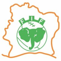 C么te d'Ivoire Football Confederation Light Iron-on Stickers (Heat Transfers)