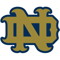 1994-Pres Notre Dame Fighting Irish Alternate Logo Light Iron-on Stickers (Heat Transfers)