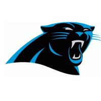 2012 Carolina Panthers Primary Logo  Light Iron-on Stickers (Heat Transfers)