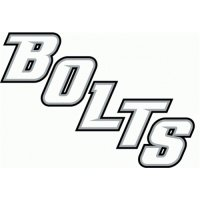 Tampa Bay Lightning Script Logo  Light Iron-on Stickers (Heat Transfers)