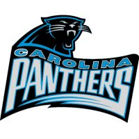 Carolina Panthers Alternate Logo  Light Iron-on Stickers (Heat Transfers) version 4