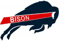 Howard Bison 2002-Pres Primary Logo Light Iron-on Stickers (Heat Transfers)