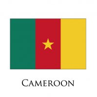 CAMEROON Flags light iron ons