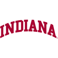 Indiana Hoosiers 0-Pres Wordmark Logo Light Iron-on Stickers (Heat Transfers)