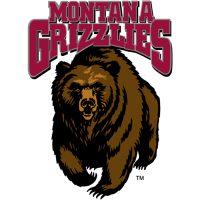 1996-Pres Montana Grizzlies Primary Logo Light Iron-on Stickers (Heat Transfers)