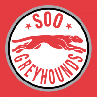 1998 99-2008 09 Sault Ste. Marie Greyhounds Alternate Logo Light Iron-on Stickers (Heat Transfers)