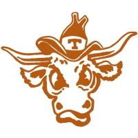 1977-Pres Texas Longhorns Alternate Logo Light Iron-on Stickers (Heat Transfers)