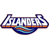 New York Islanders Script Logo  Light Iron-on Stickers (Heat Transfers)