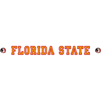 Florida State Seminoles 1990-Pres Wordmark Logo Light Iron-on Stickers (Heat Transfers)
