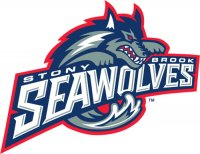 2003-2007 Stony Brook Seawolves Primary Logo Light Iron-on Stickers (Heat Transfers)
