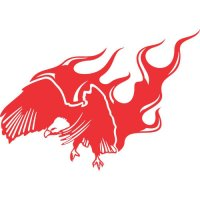 Eagle Flames light-colored apparel iron on stickers version 10