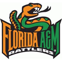 2004-Pres Florida A&M Rattlers Alternate Logo