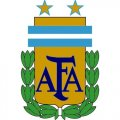 Argentina Football Confederation Light Iron-on Stickers (Heat Transfers)