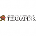 2001-Pres Maryland Terrapins Wordmark Logo Light Iron-on Stickers (Heat Transfers)