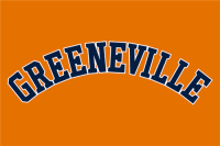 Greeneville Astros jersey 2013 Logo Light Iron-on Stickers (Heat Transfers)