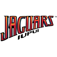 IUPUI Jaguars 2008-Pres Wordmark Logo Light Iron-on Stickers (Heat Transfers)
