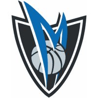 Dallas Mavericks Alternate Logo  Light Iron-on Stickers (Heat Transfers) version 3