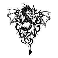 Dragon Print Wings Light Iron On Stickers (Heat Transfers)