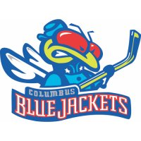Columbus Blue Jackets Alternate Logo  Light Iron-on Stickers (Heat Transfers)