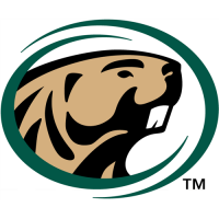 Bemidji State Beavers 2004-Pres Primary Logo Light Iron-on Stickers (Heat Transfers)